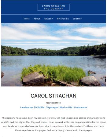 Carol Strachan Photography